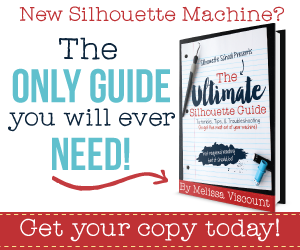 The ULTIMATE Silhouette Guide
