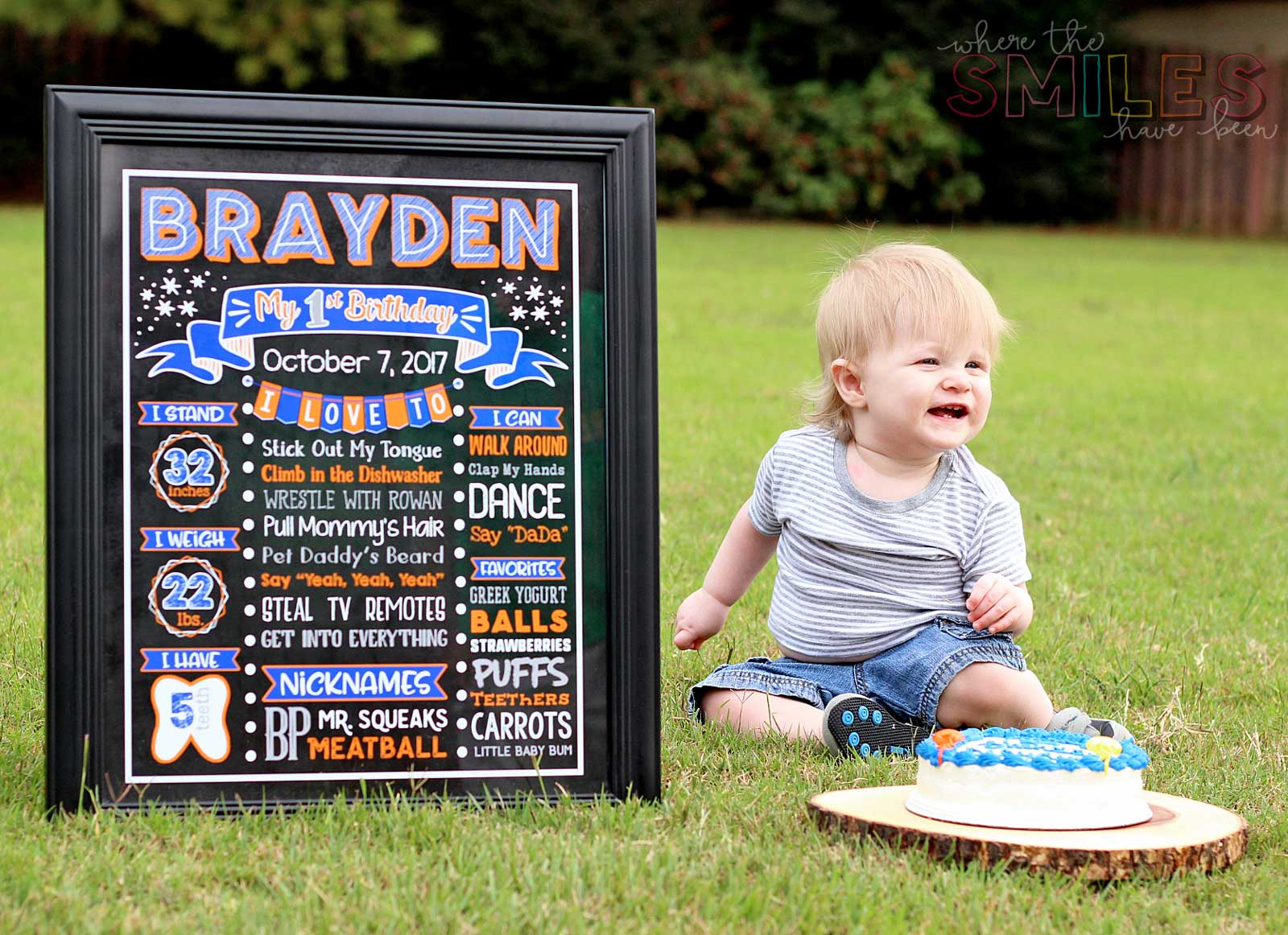 First Birthday Chalkboard Photo Prop and smash cake.