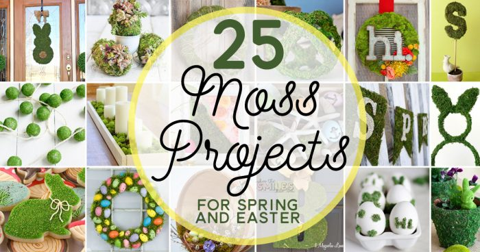 25 DIY Moss Projects for Spring & Easter | Where The Smiles Have Been #Spring #Easter #moss #DIY #springdecor #Easterdecor #mosswreath #Easterbunny #EasterEggs #monogram